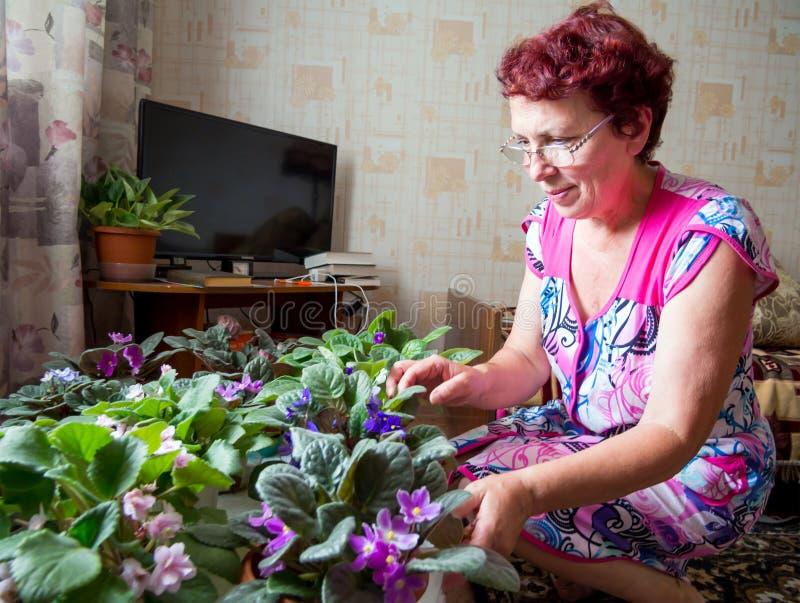 Γυναίκα που φροντίζει για τα λουλούδια στο δωμάτιο στοκ φωτογραφίες