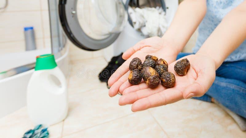 Γυναίκα που χρησιμοποιεί τα καρύδια σαπουνιών στο πλυντήριο πλύσης στοκ φωτογραφία
