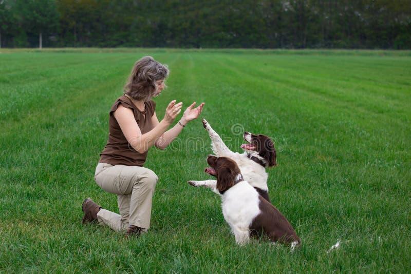 Γυναίκα που χτυπά τα χέρια για τα σκυλιά που της δίνουν ένα πόδι στοκ εικόνα