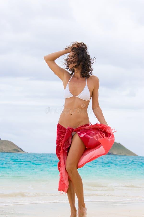 γυναίκα σαρόγκ στοκ εικόνες