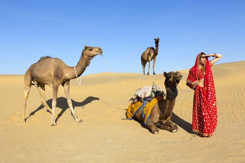 Γυναίκα στη Sari στην έρημο με τις καμήλες. στοκ φωτογραφία