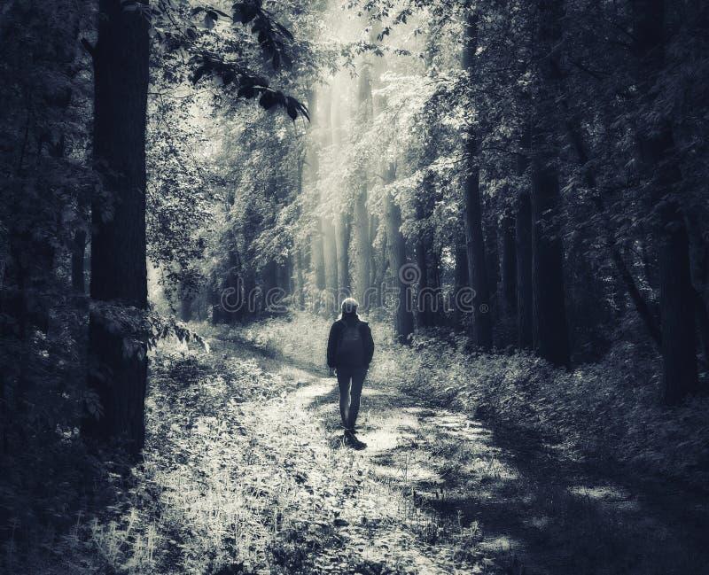 Γυναίκα στο δάσος περπατάει στο δάσος στοκ φωτογραφία