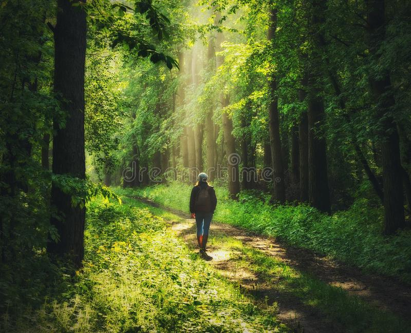 Γυναίκα στο δάσος περπατάει στο δάσος στοκ φωτογραφίες