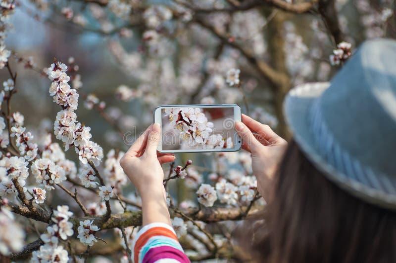 Γυναίκα στο καπέλο που φωτογραφίζεται σε ένα ανθίζοντας δέντρο άνοιξη smartphone στοκ εικόνες