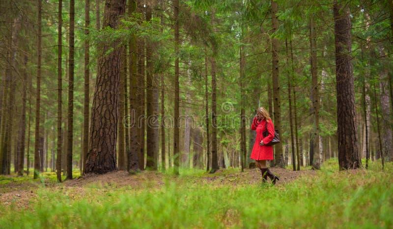 Γυναίκα στο κόκκινο παλτό στα ξύλα στοκ φωτογραφία με δικαίωμα ελεύθερης χρήσης