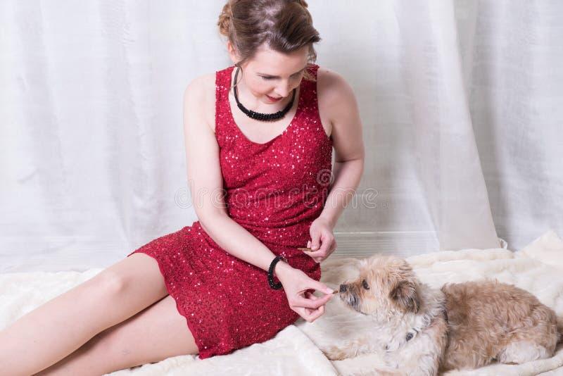 Γυναίκα στο κόκκινο ταΐζοντας σκυλί φορεμάτων στο κάλυμμα στοκ φωτογραφία