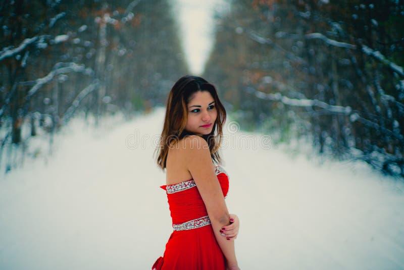 Γυναίκα στο κόκκινο φόρεμα Σιβηρία, χειμώνας στο δάσος, πολύ κρύο στοκ εικόνα