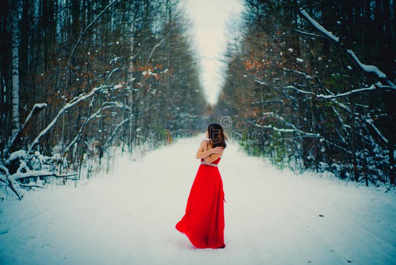 Γυναίκα στο κόκκινο φόρεμα Σιβηρία, χειμώνας στο δάσος, πολύ κρύο στοκ εικόνες με δικαίωμα ελεύθερης χρήσης