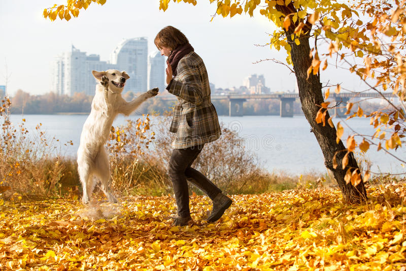Γυναίκα στο παιχνίδι πάρκων φθινοπώρου με το σκυλί της στοκ εικόνα με δικαίωμα ελεύθερης χρήσης