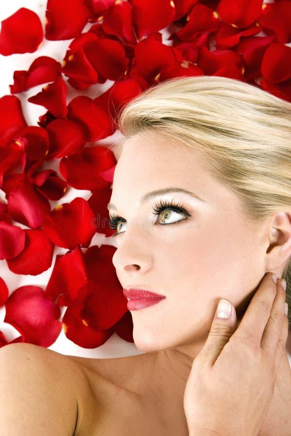 γυναίκα τριαντάφυλλων Στοκ Φωτογραφίες