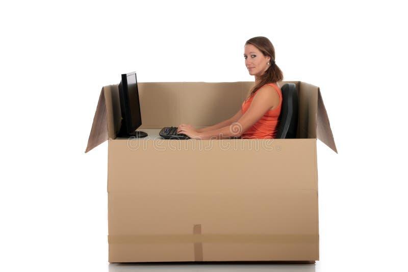 γυναίκα υπολογιστών συ& στοκ εικόνα