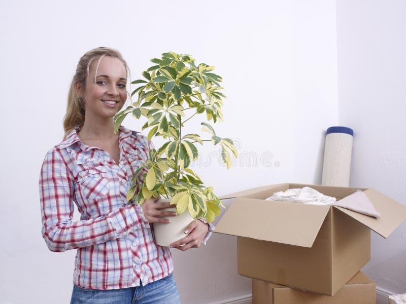 γυναίκα φυτών κιβωτίων στοκ φωτογραφία με δικαίωμα ελεύθερης χρήσης