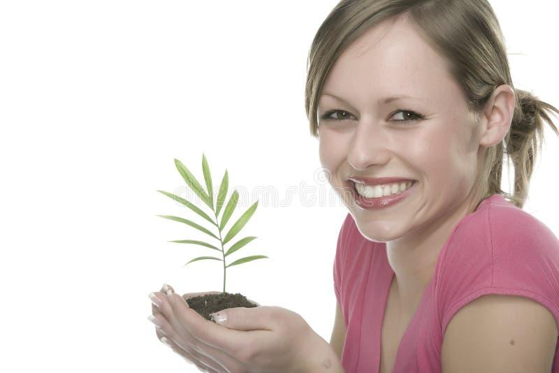 γυναίκα φυτών στοκ εικόνες
