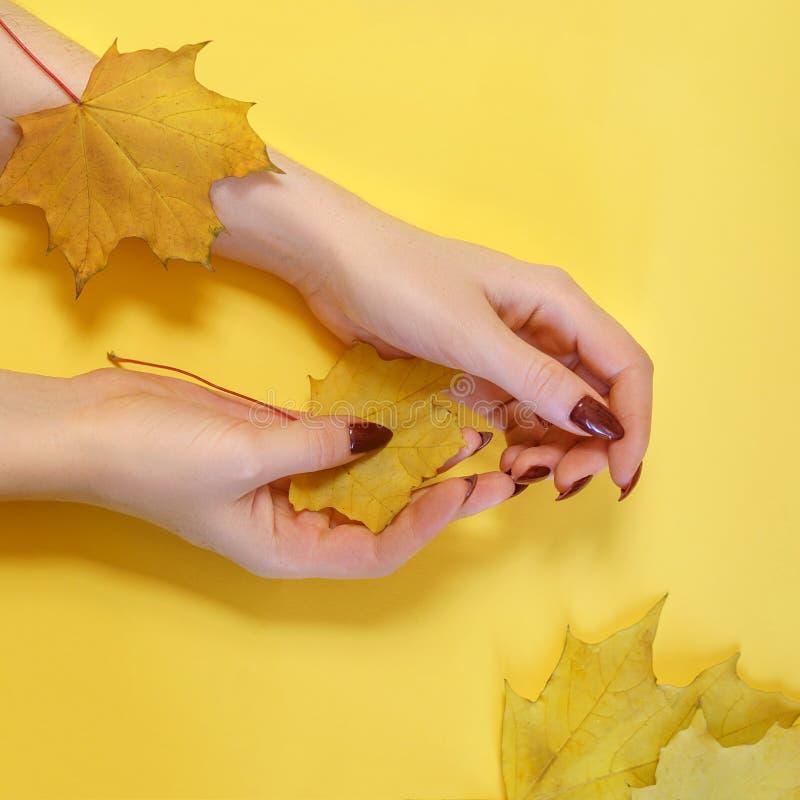 Γυναίκα χεριών τέχνης μόδας στο χρόνο φθινοπώρου και φύλλα σε ετοιμότητα της με τη φωτεινή αντιπαράθεση makeup Δημιουργικά κορίτσ στοκ φωτογραφία με δικαίωμα ελεύθερης χρήσης