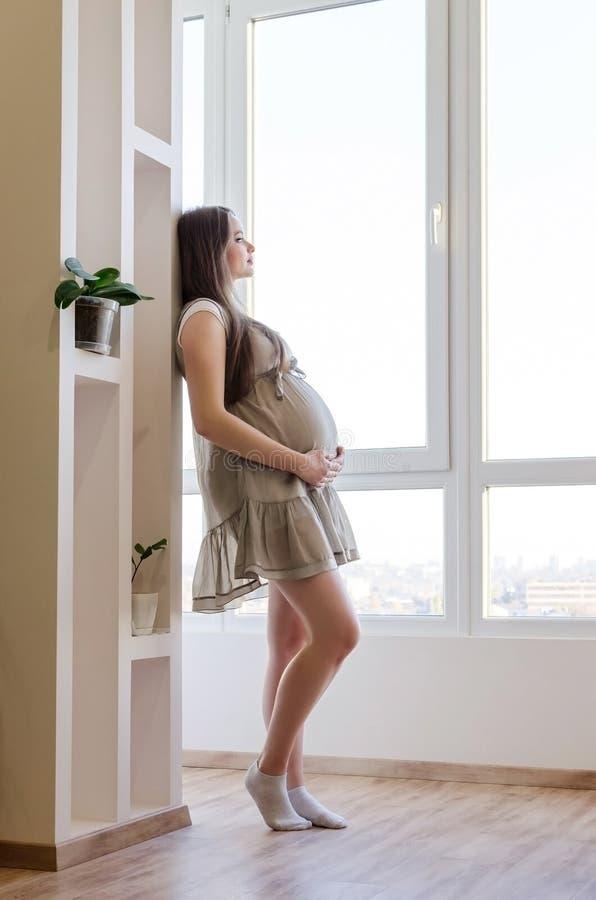 Γυναίκα Pragnant στο φόρεμα στοκ εικόνες