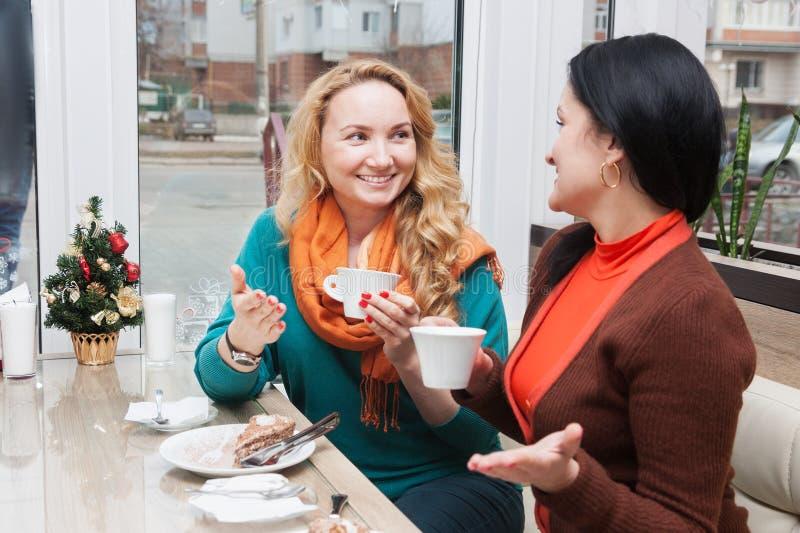 Γυναίκες που μιλούν στον καφέ στοκ εικόνες