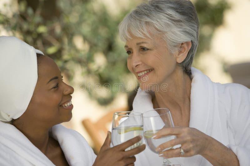 Γυναίκες που ψήνουν το ποτό στοκ φωτογραφία με δικαίωμα ελεύθερης χρήσης