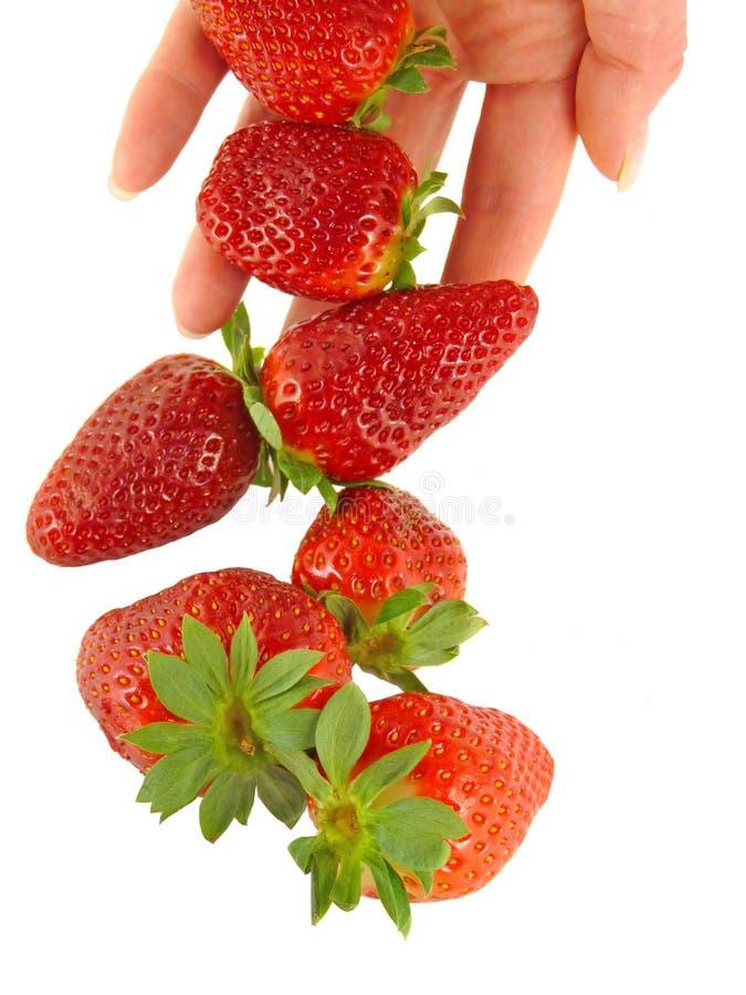 γυναίκες φραουλών χεριώ&n στοκ εικόνες με δικαίωμα ελεύθερης χρήσης
