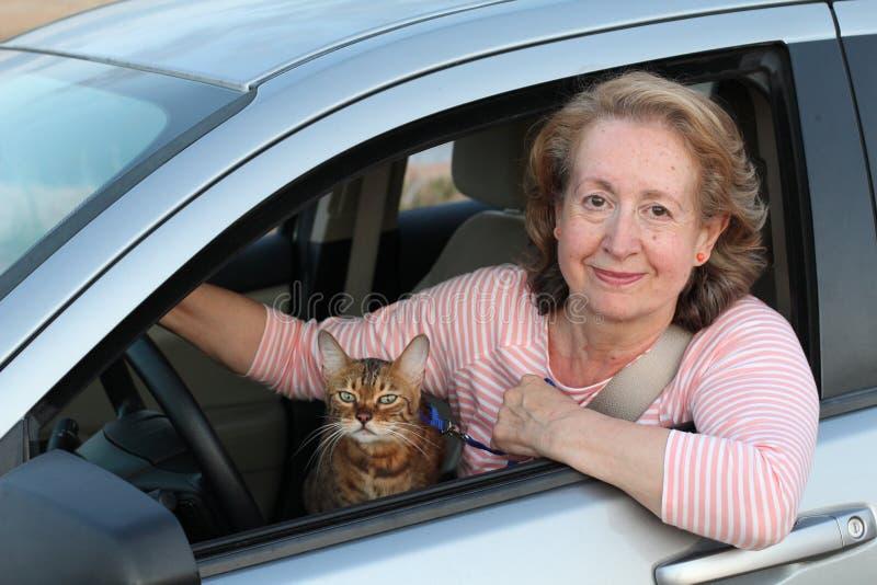 Γυναικεία οδήγηση με τον αιλουροειδή σύντροφό της στοκ εικόνες με δικαίωμα ελεύθερης χρήσης