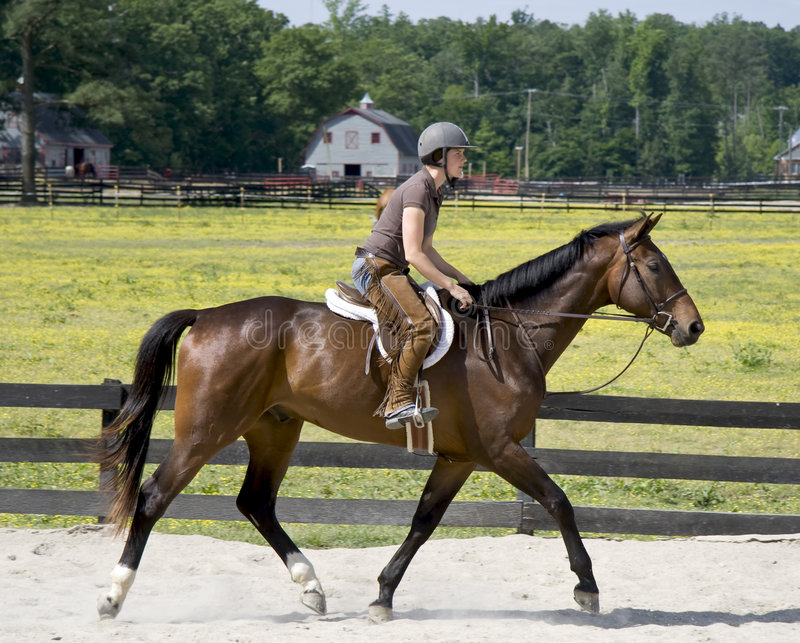 γυναικείες οδηγώντας νεολαίες πλατών αλόγου στοκ φωτογραφία με δικαίωμα ελεύθερης χρήσης