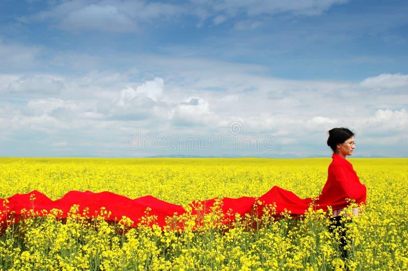 γυναικείο καλοκαίρι στοκ εικόνες με δικαίωμα ελεύθερης χρήσης