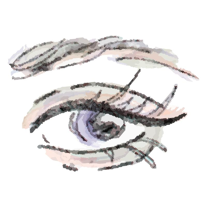 Γυναικείο μοντέρνο μάτι και brows με τα πλήρη μαστίγια ελεύθερη απεικόνιση δικαιώματος