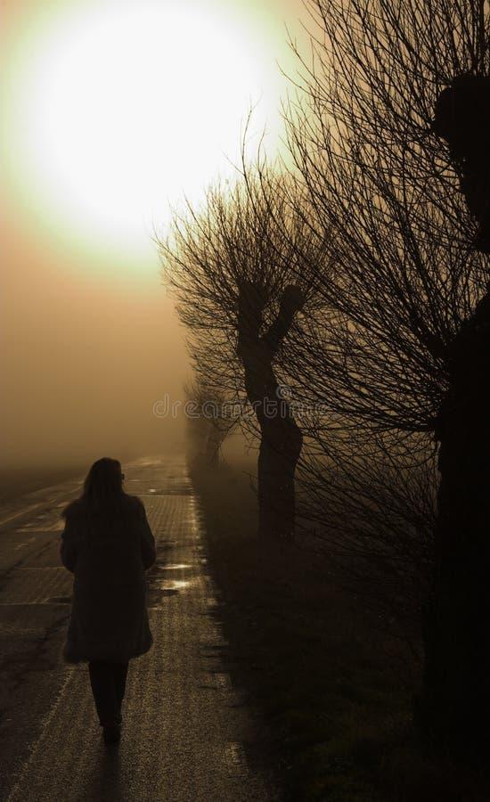 γυναικείο περπάτημα στοκ φωτογραφία με δικαίωμα ελεύθερης χρήσης