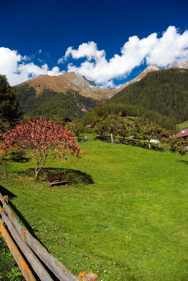 γωνία κήπων στοκ φωτογραφία με δικαίωμα ελεύθερης χρήσης