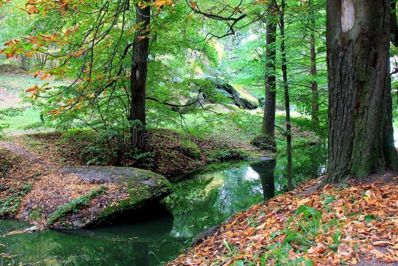Γωνία του δάσους φθινοπώρου με έναν μικρό ποταμό και τις πέτρες στοκ εικόνα με δικαίωμα ελεύθερης χρήσης