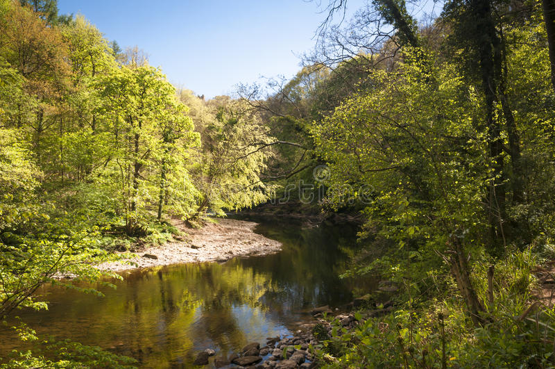Γωνία Ure ποταμών στοκ εικόνες