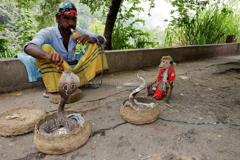 Γόης φιδιών με το cobra στη Σρι Λάνκα στοκ εικόνες