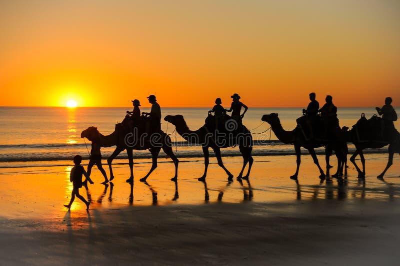 Γύρος καμηλών στο ηλιοβασίλεμα στοκ φωτογραφία με δικαίωμα ελεύθερης χρήσης