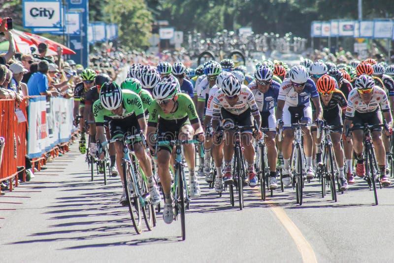 Γύρος της φυλής ποδηλάτων Αλμπέρτα στοκ φωτογραφίες