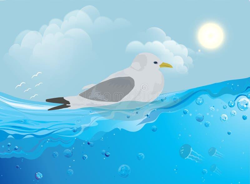 Γλάρος στο νερό απεικόνιση αποθεμάτων