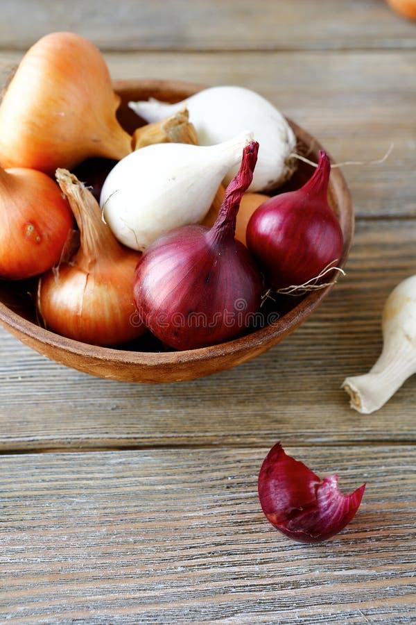 Γλυκά κρεμμύδια των διαφορετικών ποικιλιών και του ξηρού φλοιού σε ένα κύπελλο στοκ φωτογραφίες με δικαίωμα ελεύθερης χρήσης