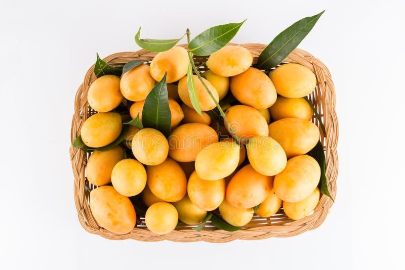 Γλυκά της Παρθένου Μαρίας ταϊλανδικά φρούτα δαμάσκηνων στο άσπρο υπόβαθρο στοκ εικόνα με δικαίωμα ελεύθερης χρήσης