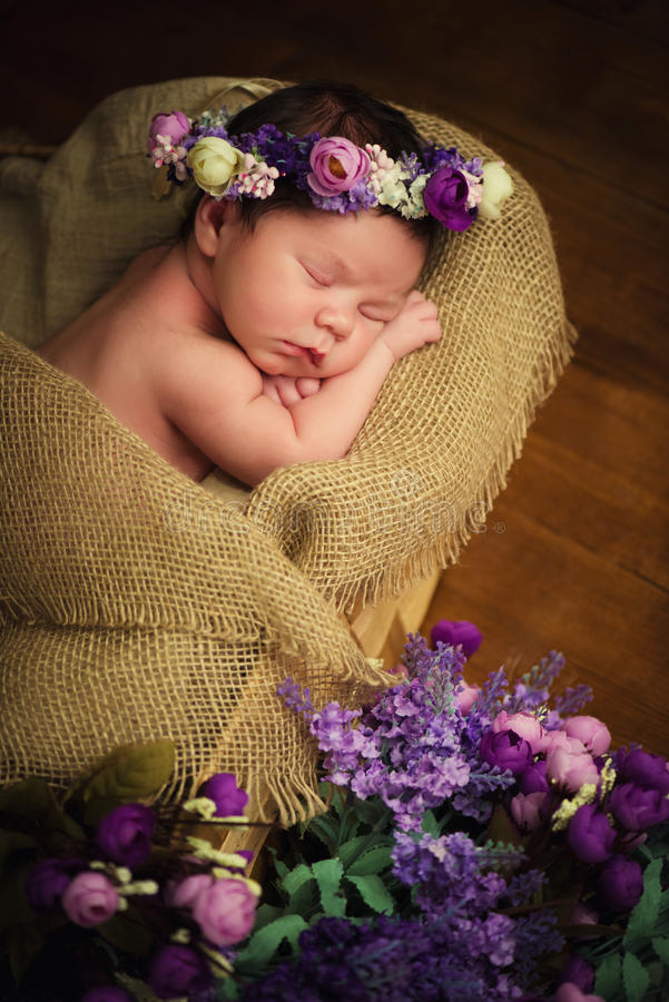 Γλυκά όνειρα του νεογέννητου μωρού Όμορφο μικρό κορίτσι με τα ιώδη λουλούδια στοκ φωτογραφία με δικαίωμα ελεύθερης χρήσης