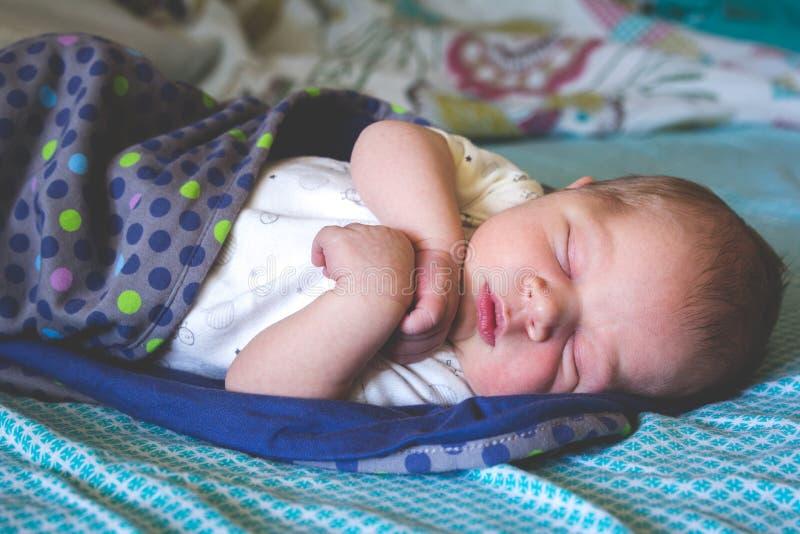Γλυκός παλαιό νεογέννητο αγοράκι μήνα κοιμάται στοκ εικόνα με δικαίωμα ελεύθερης χρήσης