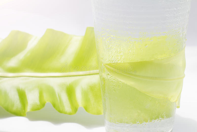 Γλυκό νερό στο γυαλί με το πράσινο φύλλο στοκ φωτογραφία με δικαίωμα ελεύθερης χρήσης
