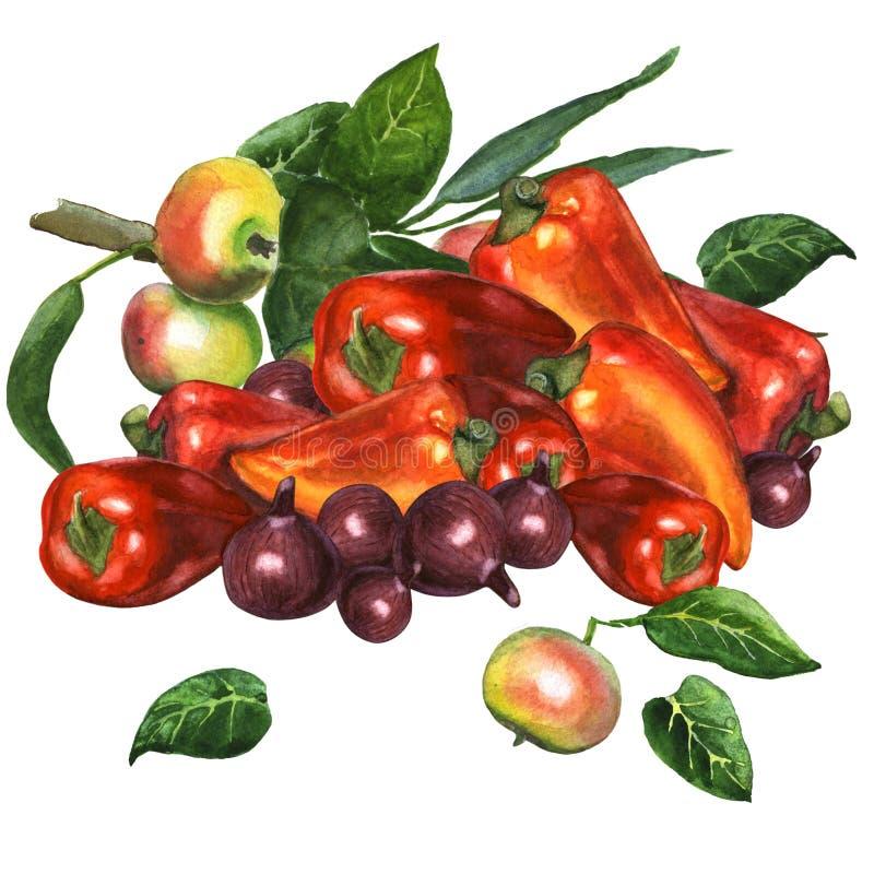Γλυκό πιπέρι με το κόκκινο κρεμμύδι και έναν κλάδο μήλων διανυσματική απεικόνιση