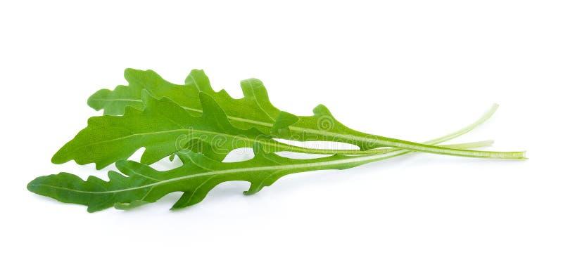 γλυκό σαλάτας rucola πυραύλων μαρουλιού φύλλων στοκ φωτογραφία