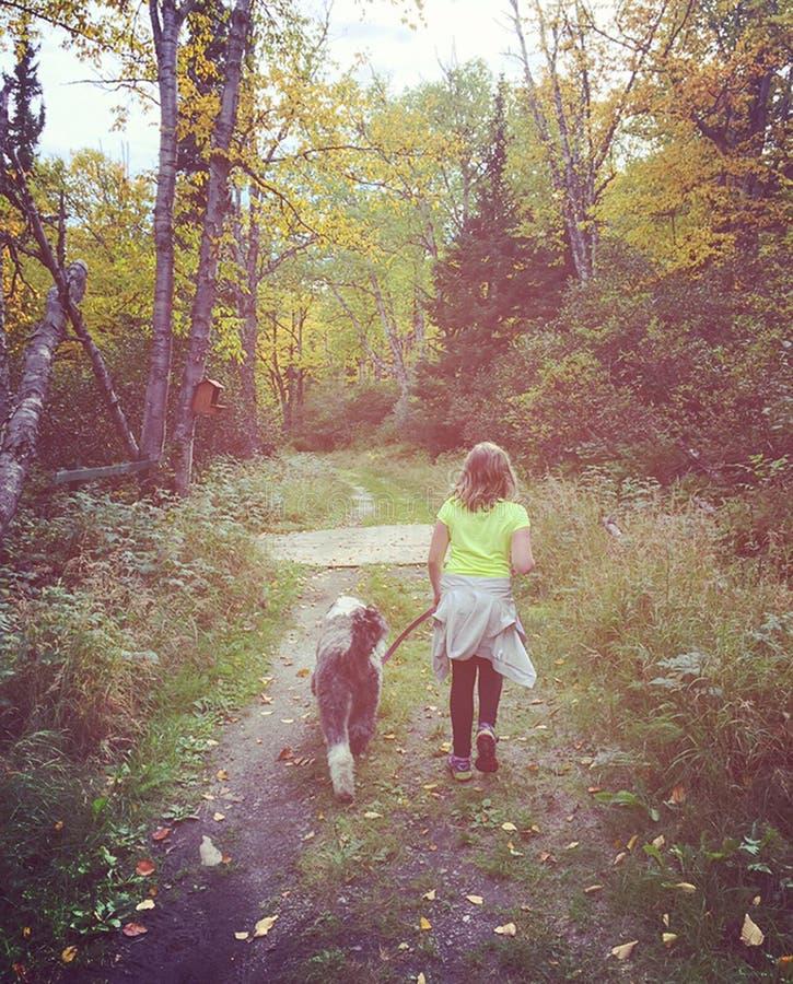 Γλυκό instagram του νέου κοριτσιού που περπατά το σκυλί της στο δάσος στοκ εικόνες