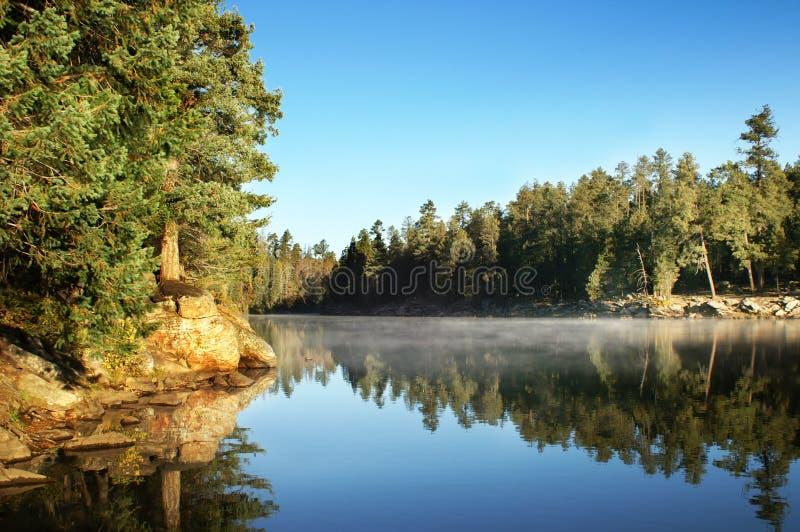 δάση πρωινού λιμνών φαραγγιών στοκ φωτογραφία
