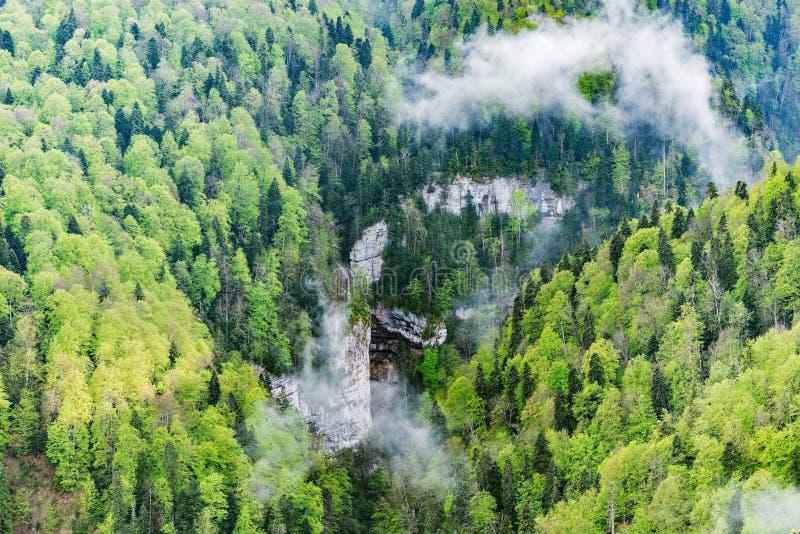 Δάσος βουνών άνοιξη στο βαθύ φαράγγι στοκ εικόνα