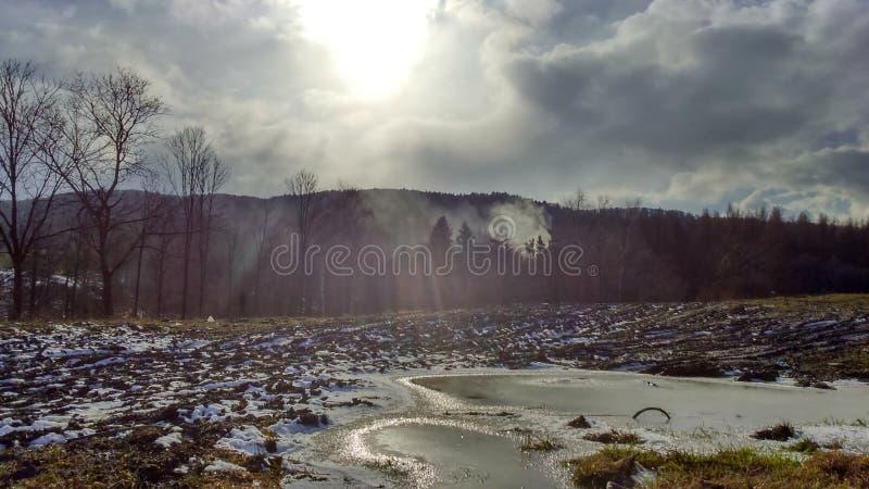 Δάσος βουνών δέντρων ήλιων καιρικού χειμώνα φύσης στοκ φωτογραφίες με δικαίωμα ελεύθερης χρήσης