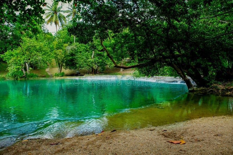 Δάσος, βράχος - αντικείμενο, άνοιξη - ρέοντας νερό, άνοιξη, στάση στοκ φωτογραφία με δικαίωμα ελεύθερης χρήσης