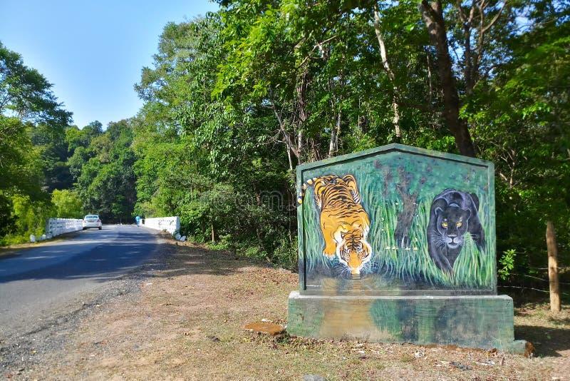 Δάσος επιφύλαξης τιγρών στοκ φωτογραφία με δικαίωμα ελεύθερης χρήσης