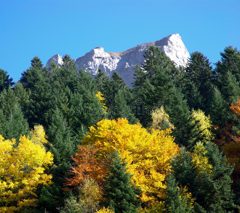 Δάσος και βουνά φθινοπώρου στοκ φωτογραφία