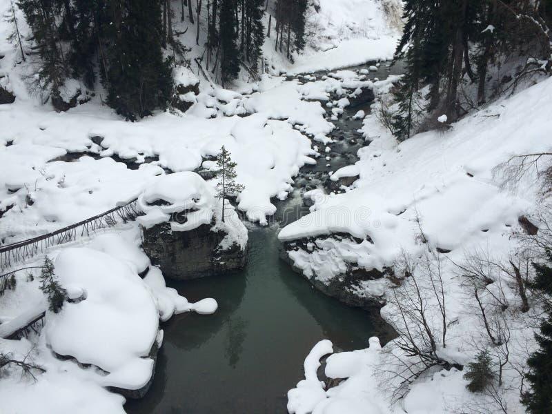 Δάσος και ποταμός χιονιού στοκ φωτογραφία με δικαίωμα ελεύθερης χρήσης