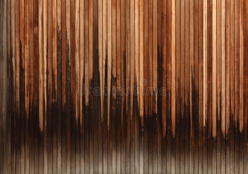 δάσος κυματοειδούς στοκ φωτογραφία με δικαίωμα ελεύθερης χρήσης